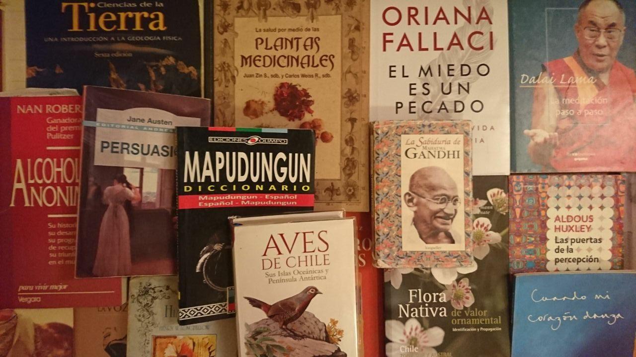 Diario Puerto Varas Noticias Cultura Vida Sana Libros