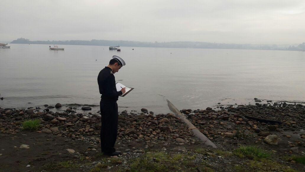 Diario Puerto Varas Noticias Actualidad contaminación lago Llanquihue