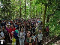 Diario Puerto Varas Carnaval del Sur