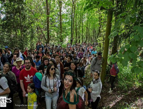 Rescate Patrimonial: Máscara Chilhueña y Carnaval del Sur
