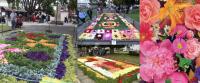 Diario Puerto Varas Turismo y Panoramas Muestra Floral Club de Jardines de Puerto Varas
