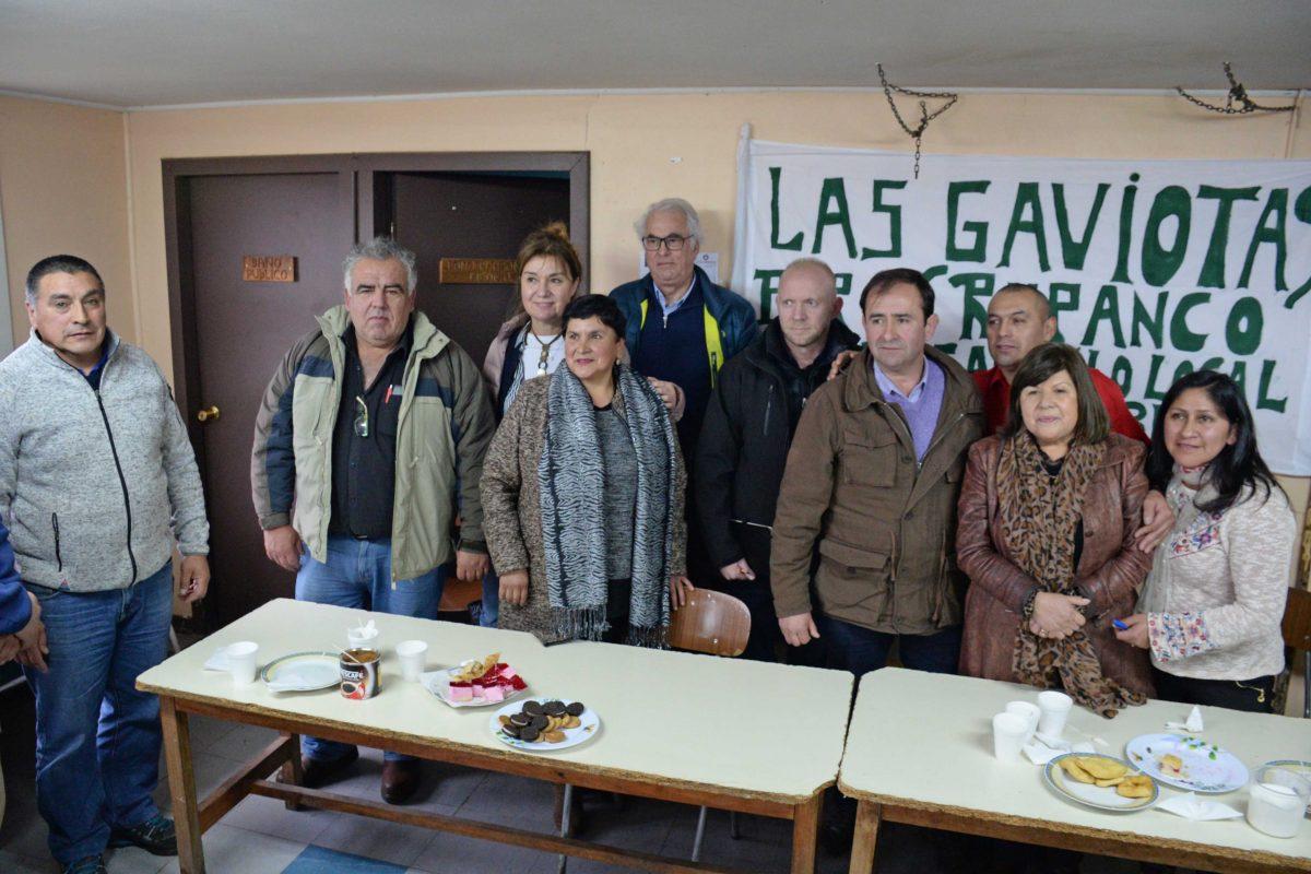 Diario Puerto Varas Noticias Actualidad Las Gaviotas Osorno
