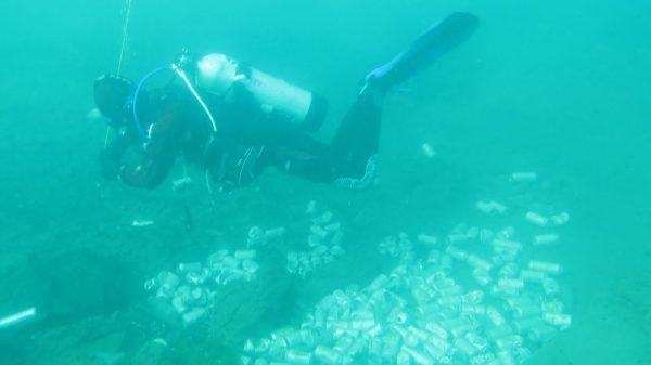 Sábado 14 de julio: Limpieza a Fondo del lago Llanquihue. Diario Puerto Varas