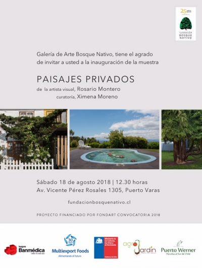 Paisajes Privados de Rosario Montero se inaugurará en Galería de Arte Bosque Nativo