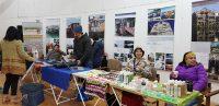 Muestra de reciclaje y sustentabilidad en Queilen - Diario Puerto Varas