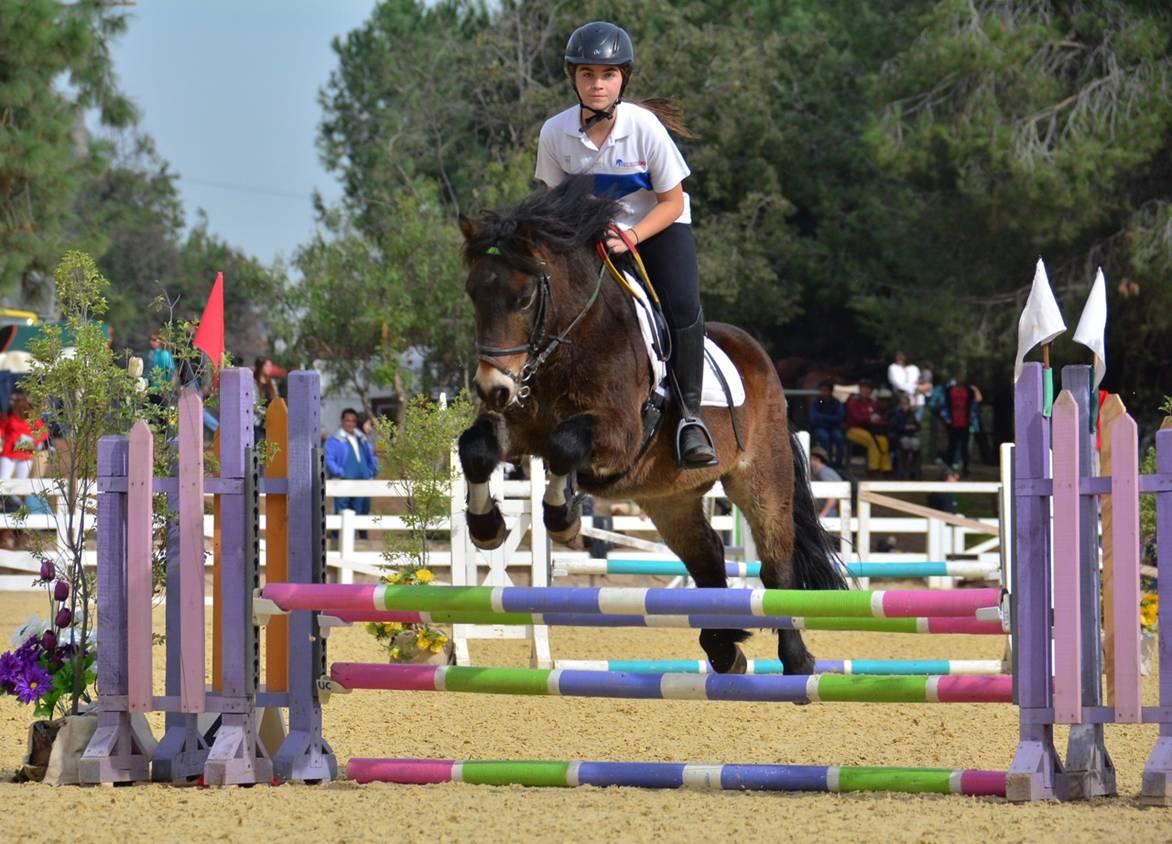Equitacion-Ponies-10 - Chile participará con 29 binomios en Americano de Equitación de Salto - Diario Puerto Varas