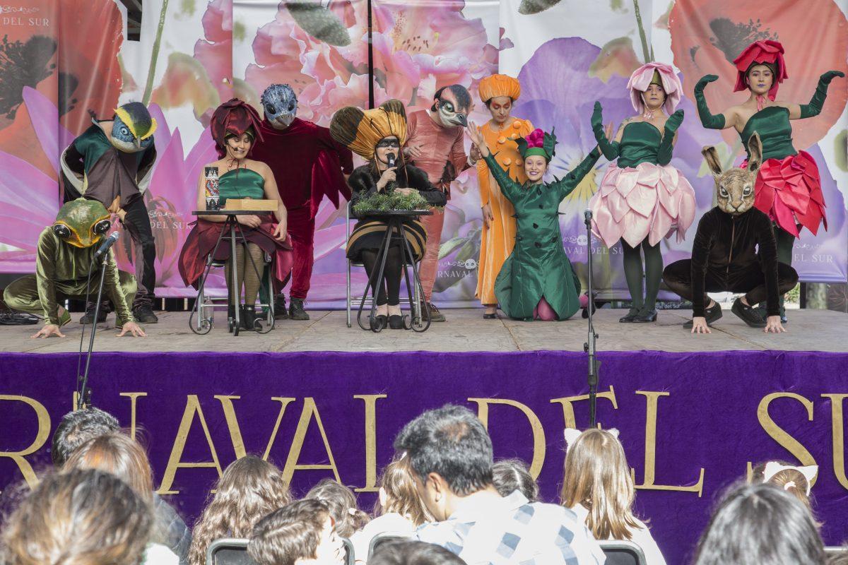 Exitosa jornada de espectáculos Carnaval del Sur - Diario Puerto Varas