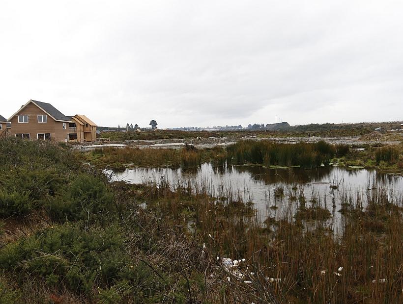 """Seminario """"Regulación de las Aguas en el Sur de Chile: Humedales y Aguas Lluvias"""" - Diario Puerto Varas"""