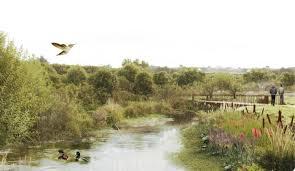 Llanquihue fue sede de diálogos sobre desarrollo sostenible y conservación de la naturaleza - Diario Puerto Varas