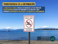 Proyecta Puerto Varas - Diario Puerto Varas