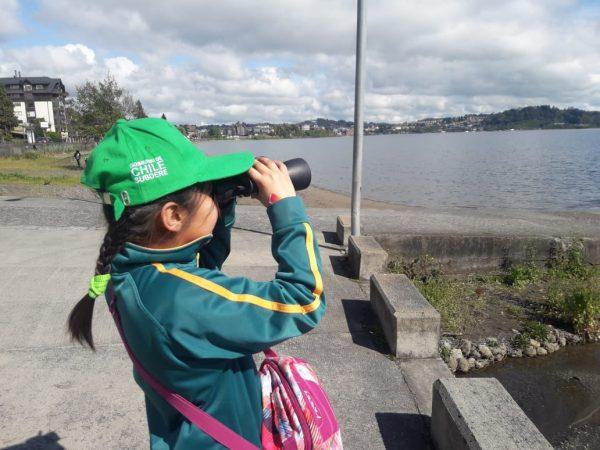 Vigilantes del Lago Llanquihue - Diario Puerto Varas