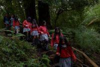 Lanzamiento regional Colorearte Visita Alerce Andino, charla y taller en Mirador del Lago - Diario Puerto Varas