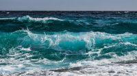 Chileno expone en seminario internacional sobre el Color del Océano - Diario Puerto Varas