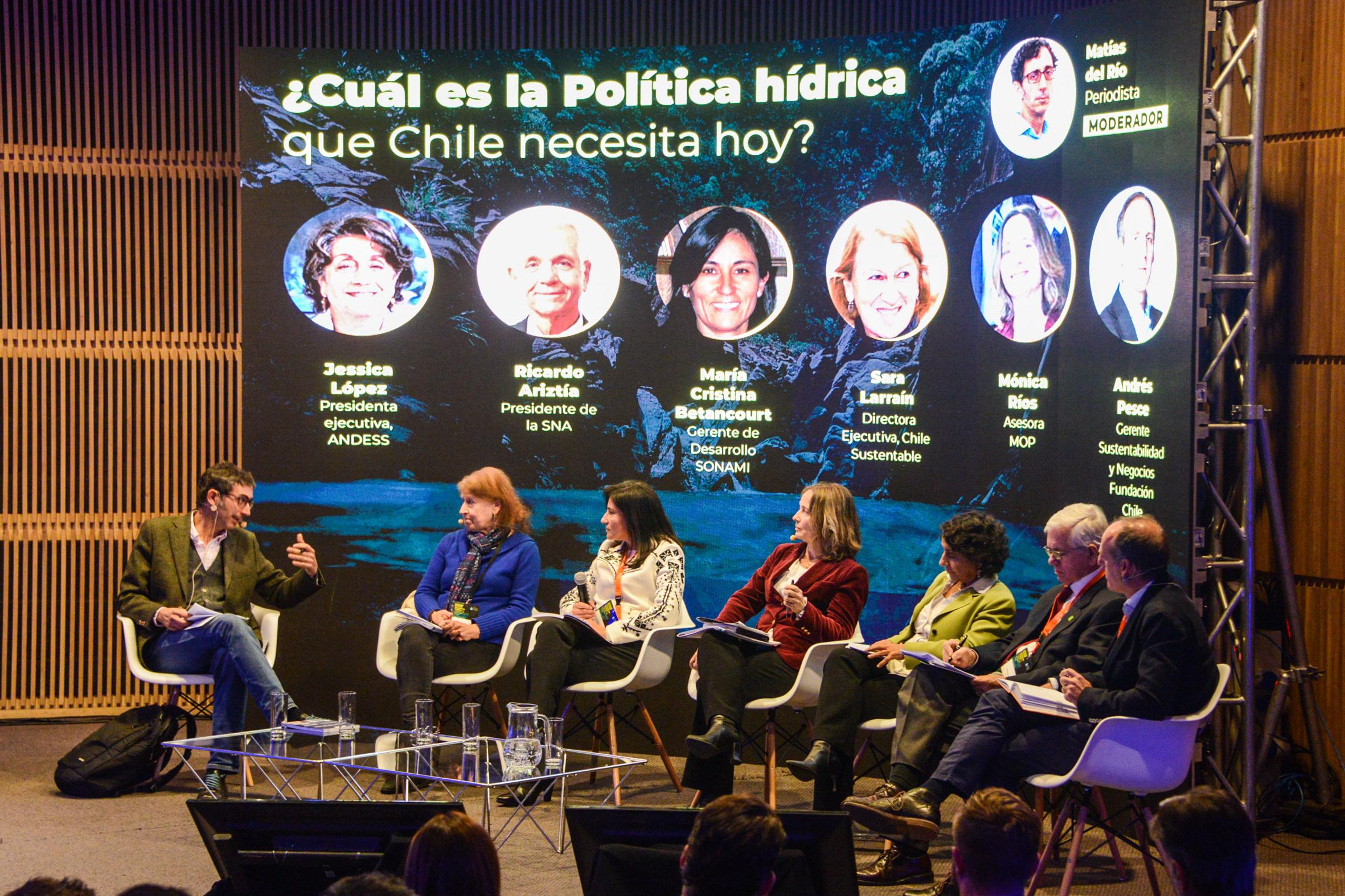 Panel Sectores productivos - Diario Puerto Varas