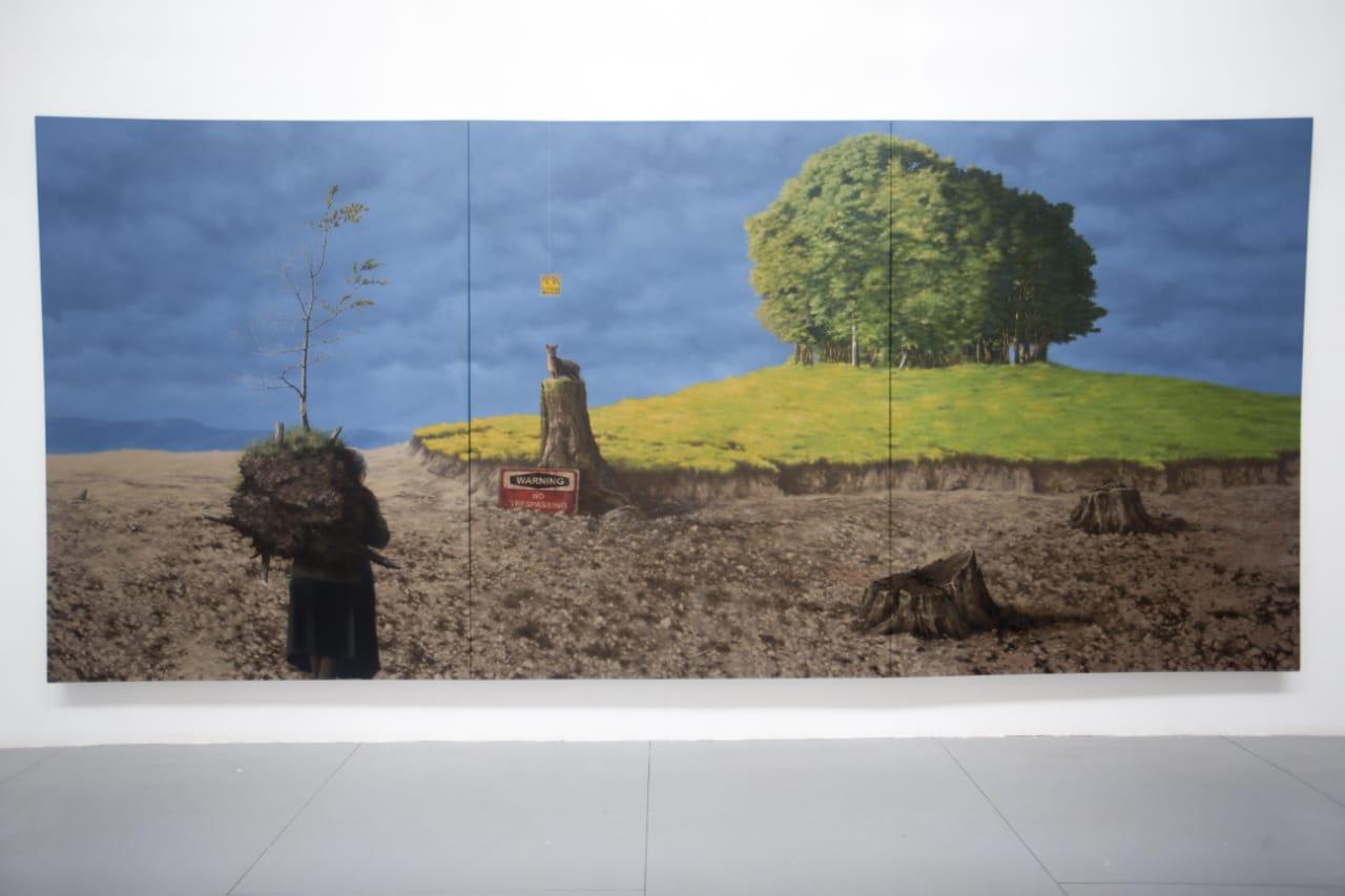 Una Tarde Cualquiera de José Triviño, fotografía de José Triviño, en Galería de Arte Bosque Nativo - Diario Puerto Varas