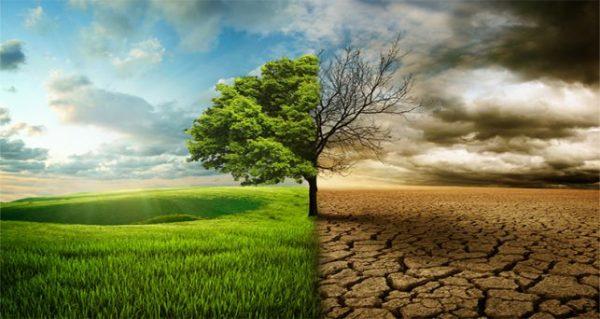 Presentan diseño del Plan Regional para el Cambio Climático en Los Lagos – Diario Puerto Varas