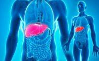 Día Internacional del Hígado Graso no alcohólico - Diario Puerto Varas
