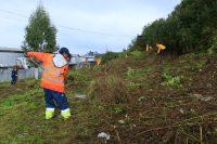 Operativos de limpieza en Puerto Montt - Diario Puerto Varas