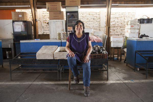 Pro Pyme Mujer financiará a emprendedoras afectadas por crisis social - Diario Puerto Varas
