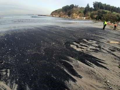 Varamiento registrado este viernes 26 de julio 2019. Playa Las Ventanas, comuna de Puchuncaví - Diario Puerto Varas