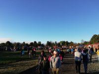 Feria Parque Vivero Alerce: masiva concurrencia - Diario Puerto Varas