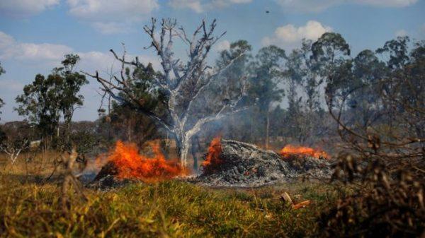 BBC imagen - Incendios en el Amazonas - Diario Puerto Varas
