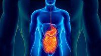 Gastroenterología - Diario Puerto Varas