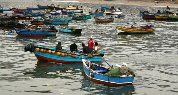 Pesca artesanal de merluza - Diario Puerto Varas