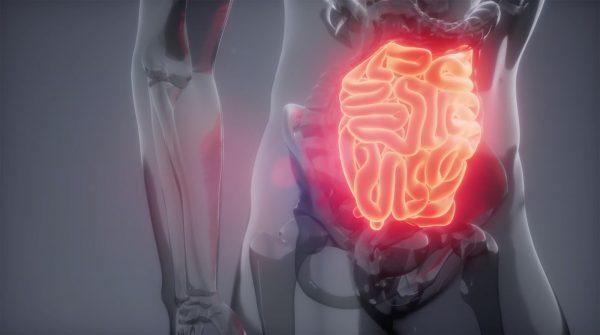 Sociedad Chilena de Gastroenterología - Cáncer digestivo - Diario Puerto Varas