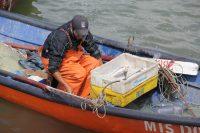 Pesca artesanal sustentable - Diario Puerto Varas