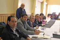 Comisiones del CORE sesionaron en Puerto Varas - Diario Puerto Varas