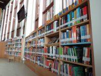 Abre sus puertas la Biblioteca Municipal de Frutillar - Diario Puerto Varas