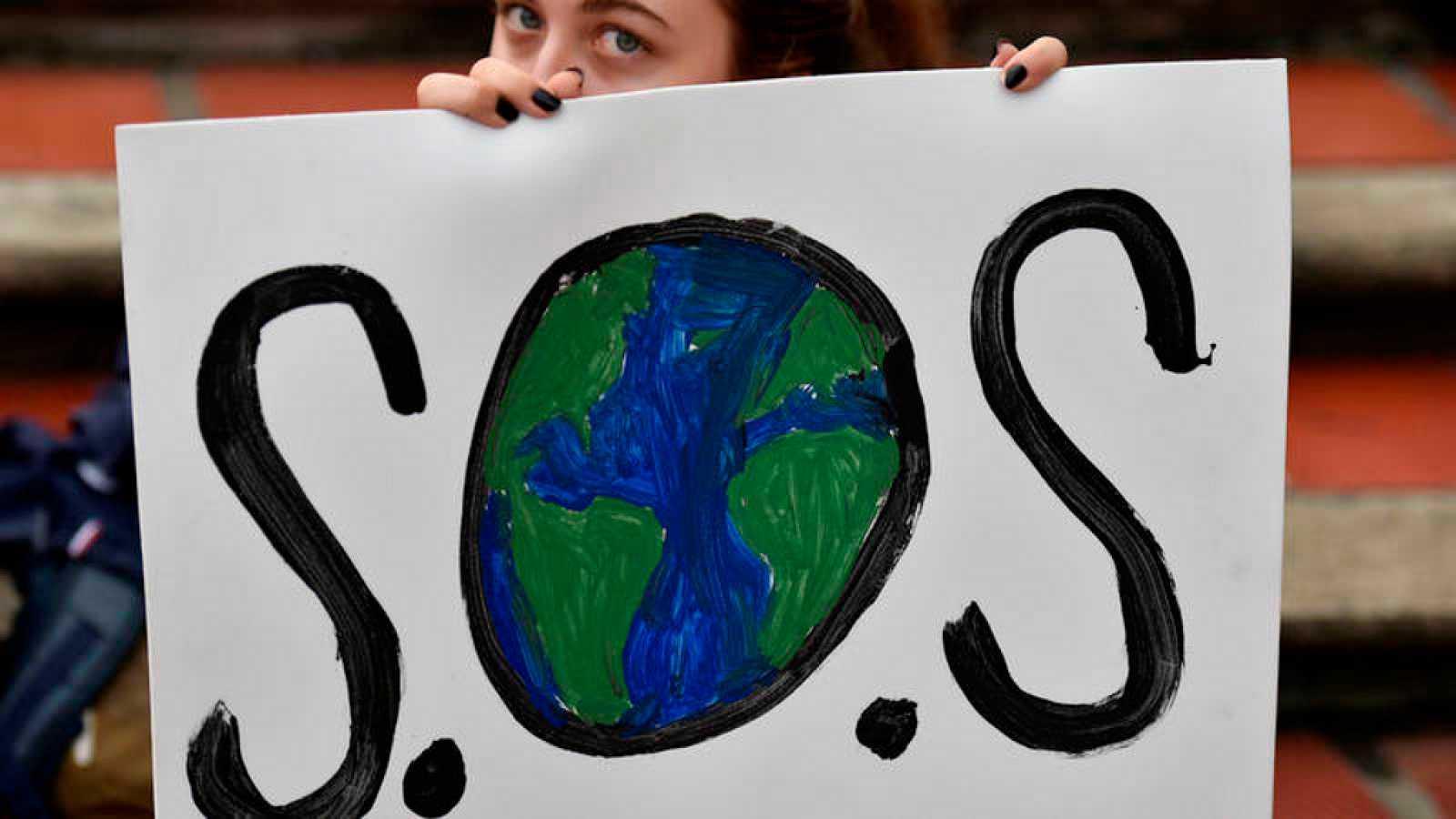 Acción climática - Diario Puerto Varas