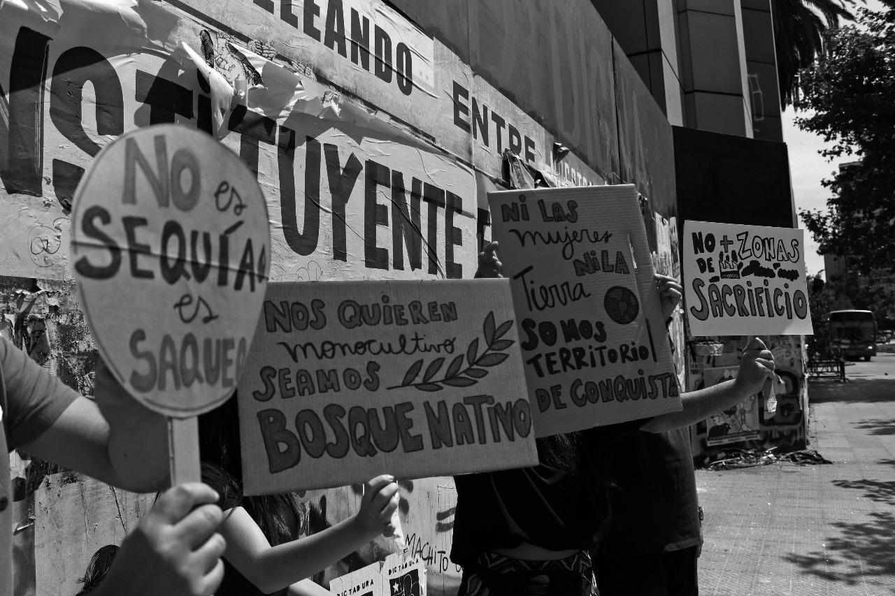 Balance ambiental: del optimismo a la decepción - Fundación Terram - Diario Puerto Varas