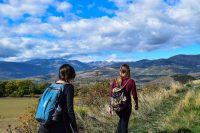 Turiwork: bolsa de empleo en hotelería, turismo y gastronomía - Diario Puerto Varas