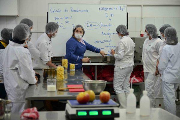 Dos liceos de la Provincia de Llanquihue se adjudican el Fondo para Iniciativas Escolares de Fundación Luksic - Diario Puerto Varas