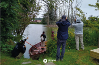 Primer censo de aves en Llanquihue - Diario Puerto Varas