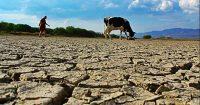 Escasez hídrica - El Mostrador - Diario Puerto Varas