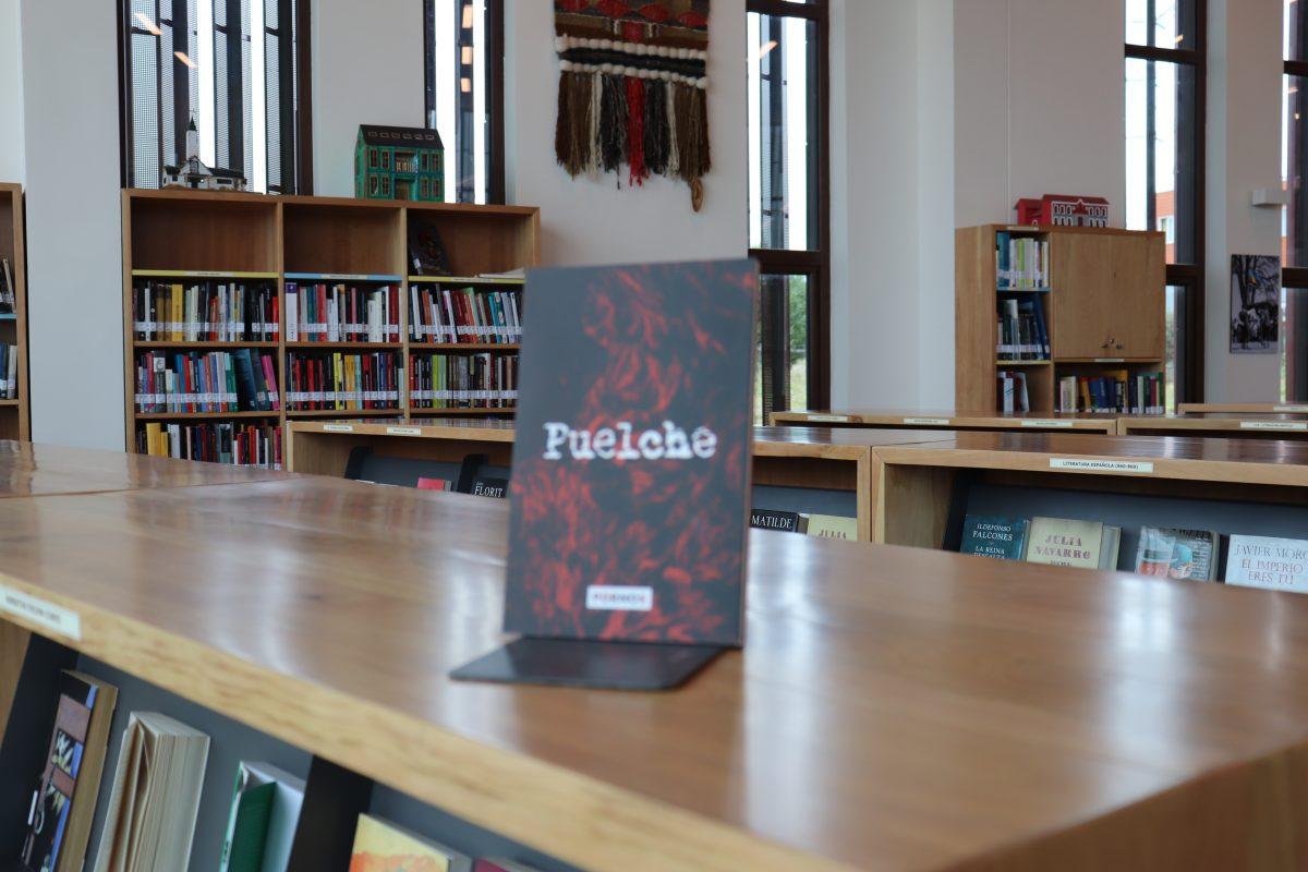Libro Puelche - Diario Puerto Varas
