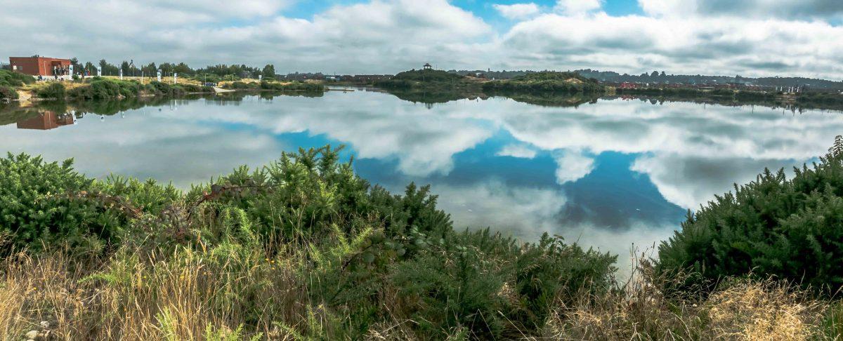 Panorámica Parque Ebel - Diario Puerto Varas