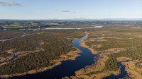 Vista aérea de Humedal Rio Maullín
