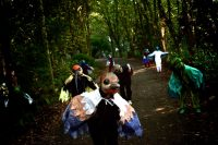 """Carnaval del Sur presenta ciclo de fiestas online """"Animal Carnival Festival"""""""