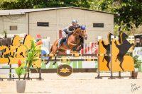 Chile obtiene 2do lugar en Mundial Ecuestre de Equitación Militar