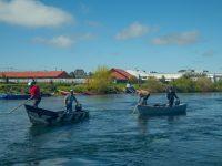 Agrupaciones de Llanquihue llevan a cabo limpieza de río Maullín